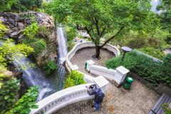 Waterfalls in Hong Kong Park in Hong Kong are especially popular with photographers. Hong Kong - January 19, 2016: An oasis of green in urban setting, Hong Kong Stock Photo
