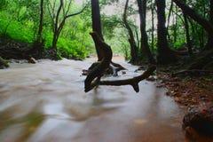 Waterfalls Royalty Free Stock Image