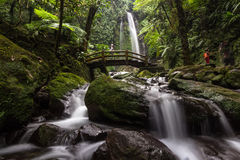 Waterfalls. Jumog Waterfalls central java indonesia Royalty Free Stock Photos