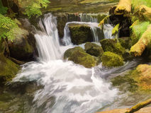 Waterfalls and mossy logs and rocks Stock Images