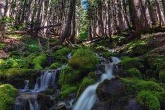 Waterfalls in Mount Rainier National Park near Spray Park in Washington state USA stock photography