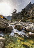 Waterfalls in the mountains of Restonica valley in Corsica Royalty Free Stock Photos