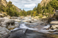 Waterfalls in the mountains of Restonica valley in Corsica Stock Images