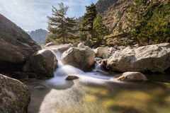 Waterfalls in the mountains of Restonica valley in Corsica Royalty Free Stock Image