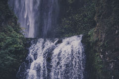 Waterfalls Near Green Leaved Plants Royalty Free Stock Image