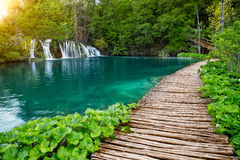 Waterfalls and pathway in the Plitvice National Park, Croatia. Waterfalls and pathway in the sunshine in the Plitvice National Park, Croatia royalty free stock photo