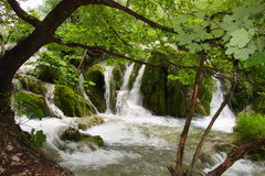 Waterfalls in Plitvice, Croatia. A photo of small waterfalls coming down over tussocks into the pond Royalty Free Stock Photography