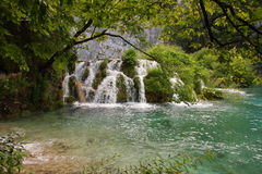 Waterfalls in Plitvice, Croatia. A photo of small waterfalls coming down over tussocks into the pond. The picture is taken in national park of Plitvice, Croatia Stock Photography