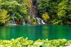 Waterfalls in the Plitvice lakes. Croatia. View of the waterfall at National park Plitvice lakes in Croatia Royalty Free Stock Photos
