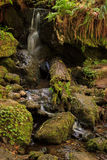 Waterfalls on a rocky stream. Cascading water through a mossy channel Stock Photo