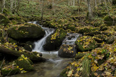 Waterfalls. Small waterfalls flowing river forms Stock Photo