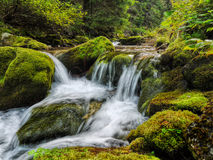 Waterfalls. And stones covered with greenery- moss in wilderness Stock Photos