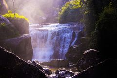 Waterfalls Surrounded by Grass and Rocks Stock Images