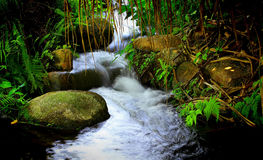 Waterfalls in a tropical forest Stock Photo