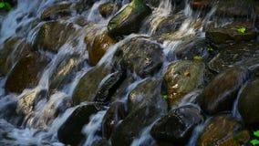 Waterfalls in a tropical garden. Beautiful waterfalls in a tropical garden in hong kong stock video