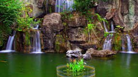 Waterfalls in tropical garden Royalty Free Stock Photography