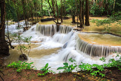 Waterfalls in the tropical rain forest Stock Image