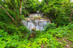 Waterfalls in the tropical rain forest  in Thailand Royalty Free Stock Photo