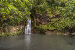 Waterfalls in Vallee des Couleurs in Mauritius. National Park Cascades Royalty Free Stock Images