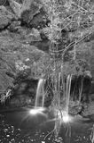 Waterfalls and Vegetation Royalty Free Stock Image