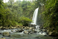 Waterfalls. Waterfall hidden in the forest Stock Photography