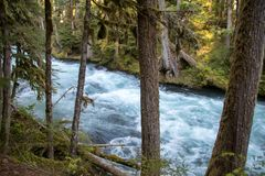 Waterfalls in Oregon Stock Image