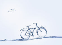 Waterfiets en Vogels Stock Foto