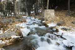 Waterflow in the woods during snow fall Stock Image