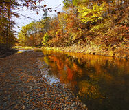 Waterford Trout Creek Autumn Colors Reflection Arkivbild