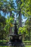 Waterfountain - ботанический сад Рио-де-Жанейро, Бразилия Стоковая Фотография
