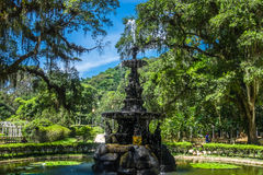 Waterfountain - ботанический сад Рио-де-Жанейро, Бразилия Стоковые Изображения