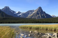 Waterfowl Lake and Mountains in the Fall Stock Photography