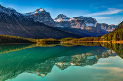 Waterfowl Lake Stock Images