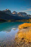 Waterfowl Lake Stock Image