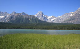 Waterfowl Lakes Royalty Free Stock Image