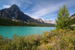 Waterfowl Lakes at the Banff National Park Royalty Free Stock Photography