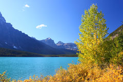 Waterfowl Lakes in Banff Park Royalty Free Stock Photo