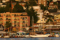 Waterfront apartment buildings in Seattle. Waterside view of apartment buildings in Seattle, Washington, with sailing boats anchored in front Royalty Free Stock Images