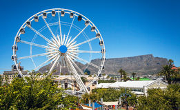 Waterfront in Cape Town. Ferris wheel at the waterfront in Cape Town Royalty Free Stock Image