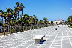 Waterfront in Civitavecchia. Civitavecchia Rome Italy,The main avenue of the city adorned with palm trees bordering the coast royalty free stock photos