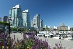 Waterfront Condominium Living Royalty Free Stock Photo