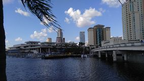 Waterfront in downtown tampa Stock Image