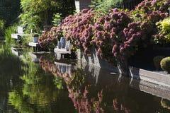 Waterfront garden in autumn Stock Photos