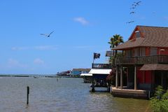 Waterfront homes in Galveston, Texas, Gulf Coast, United States of America. Pelicans fly in formation, maritime scenery. Maritime landscape with wooden Royalty Free Stock Image