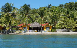 Waterfront hostel tropical beach coconut trees Stock Image