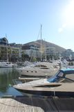 Waterfront Living. Yachts moored in the tranquil harbour with apartment blocks in the background. Wooden gangway in the forefront royalty free stock photo