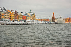Waterfront of the Old City of Stockholm with Christmas tree. Waterfront of the Old City of Stockholm with a Christmas tree in Sweden in wintertime Royalty Free Stock Photography