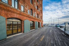 The Waterfront Promenade at Hendersons Wharf, in Fells Point, Baltimore, Maryland.  royalty free stock photography