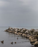 Waterfront and stone wall Royalty Free Stock Photo