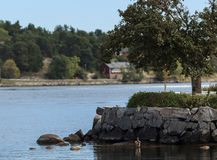 Waterfront. Swedish waterfront in the summer Royalty Free Stock Images